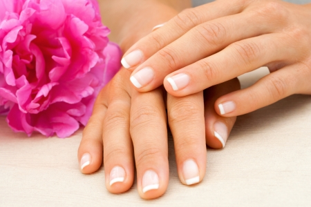Macro close up of female hands with french manicure Stock Photo - 14260580