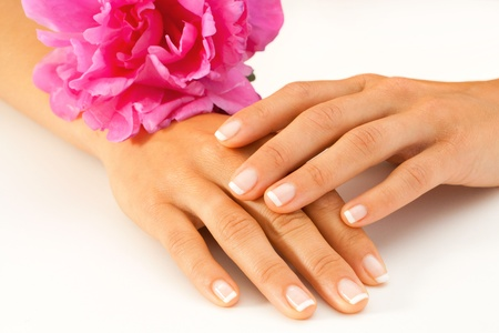 Macro close up of female hands with french manicure and pink decorative flower  photo