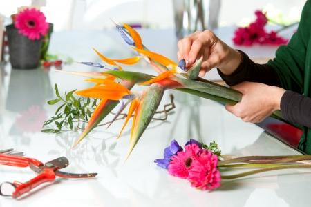 Close up of female hands arranging flower bouquet.