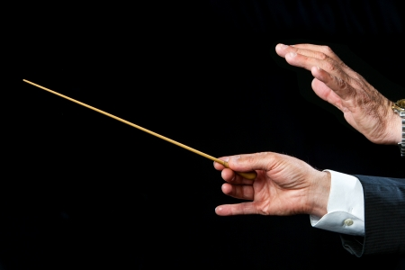 Close up of male conductors hands ready to direct.