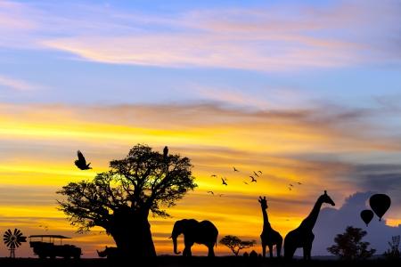 Konzeptionelle African Safari Szene mit tierischen Silhouetten bei Sonnenuntergang.