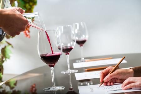 Close-up van sommelier gieten rode wijn met karaf op wijn tasting.Female hand nemen van notities aan tafel.