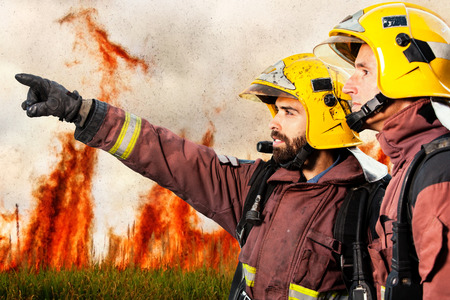 fire protection: Firemen looking and pointing at danger situation with high flames in background.