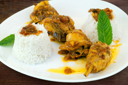 indian cookery: Macro close up of spicy hot chicken curry with steamed white rice and green mint leaves. Stock Photo