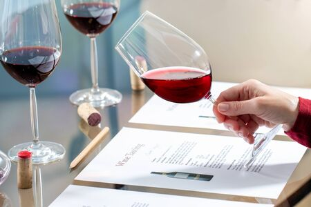 Close up of enologist holding red wine glass at table. Documents and pencil for evaluation.