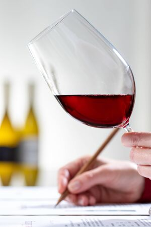 Close up vertical shot of enologist evaluating red wine body and color at table.