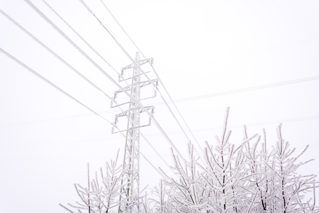Snowy and frozen power lines