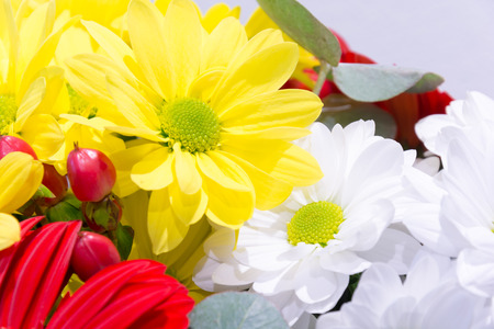 A large bouquet of love. Bouquet of gerberas and daisies. Bridal bouquet. Bundle of flowers in a vase. Fresh scent of spring flowers.
