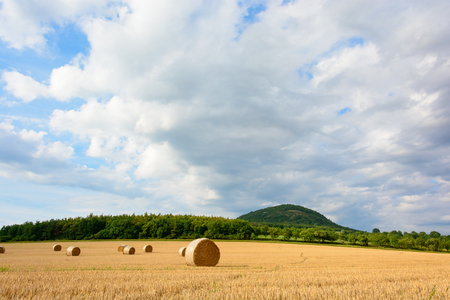 Straw bales in the meadow. Grain harvest in the country. Fertile fields under the mountain Rip.