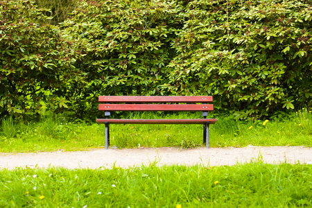 hedge: Empty dark red wooden bench in the park. A place to sit in nature. Natural bench beside the park.