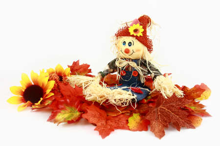 Autumn Scarecrow Series Leaves And Flowers  Stock Photo