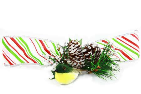 pinecones: Winter Border With Ribbon Pinecones And Bird Stock Photo