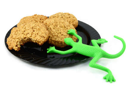 Cookies with Toy Gecko