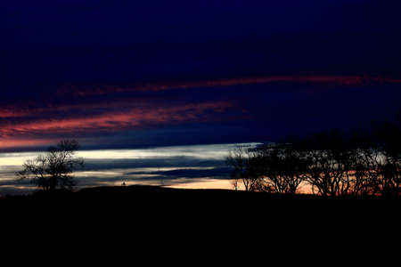 Late Evening Sunset With Silhouetted Trees