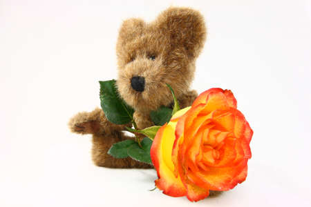 Small Teddy Bear With Large Colorful Rose