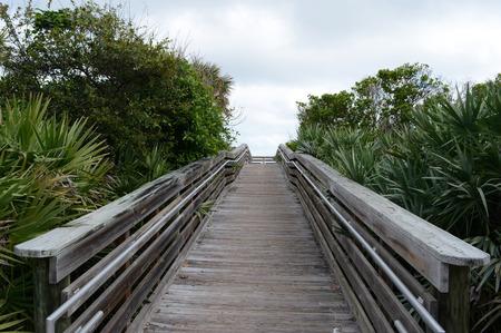 Beautiful Foliage Bridge Entrace to the Ocean Reklamní fotografie