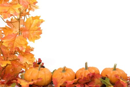 Pumpkins on white background with fall leaves frame photo