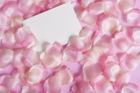 pedal: Pink rose pedal background with a blank card for your message Stock Photo