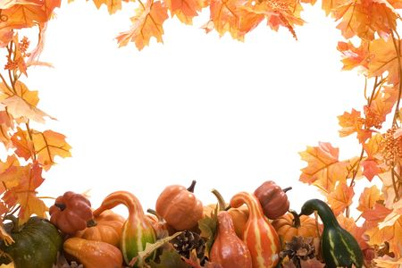 patch: Pumpkins and gourds on isolated on white background with fall leaves frame