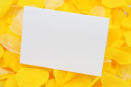Blank  card yellow flower petals for your own message