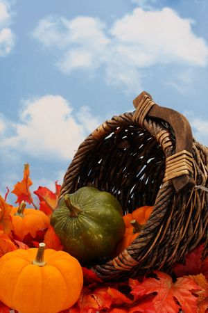 Autumn harvest scene on sky background with cornucopia photo