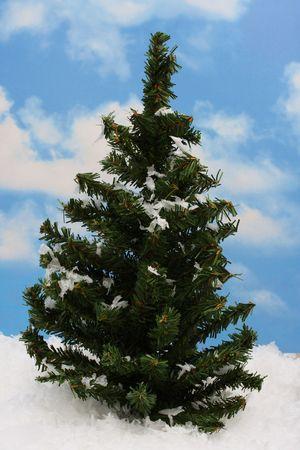 Tree with snow, sky background photo
