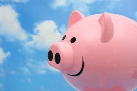 When pigs fly photo