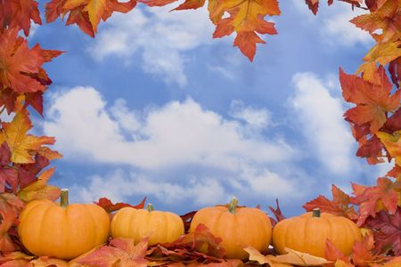 Fall Harvest border with sky background photo