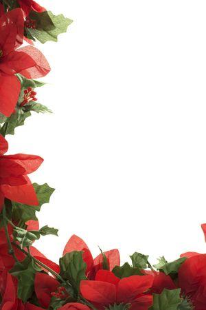 Poinsettia border isolated on a white background photo