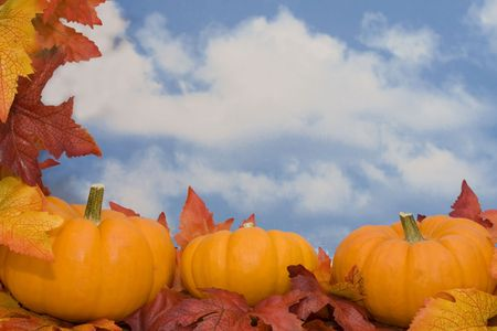 Pumpkins on fall leaves with sky background photo