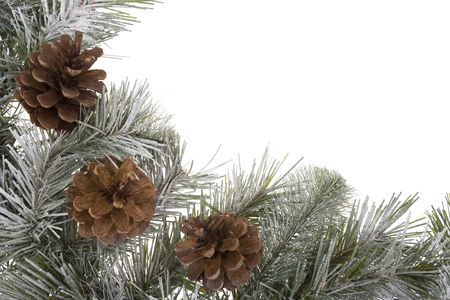 Pinecones on wreath with snow isolated on white