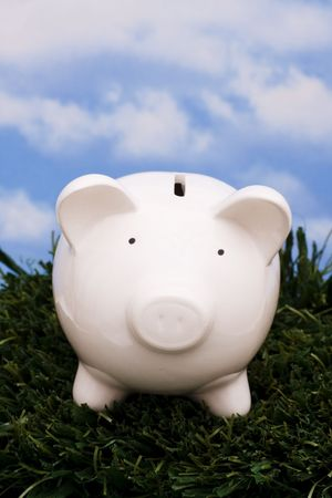 bringing: Coin bank sitting on grass with sky background