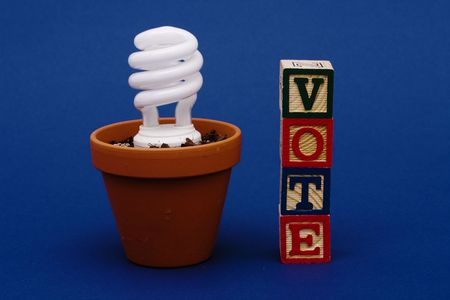 Light bulb in plant pot with vote Stock Photo - 2526014