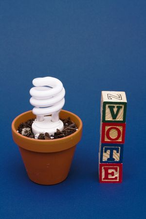 Light bulb in plant pot with vote Stock Photo - 2628914