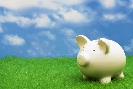 piggy bank money: Coin bank sitting on grass with copy space