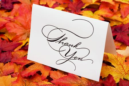 thank you card: Thank you card on leaves with copy space