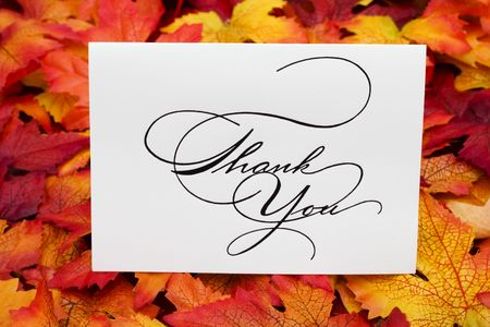 Thank you card on leaves with copy space photo