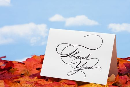 Thank you card on leaves – with copy space Stock Photo - 3371212