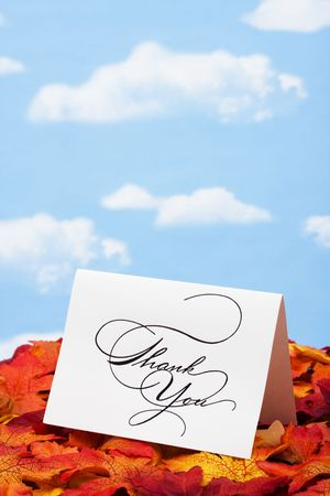 respond: Thank you card on leaves � with copy space