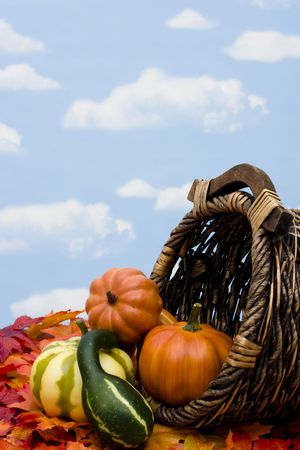 Fall harvest scene with gourds and basket photo