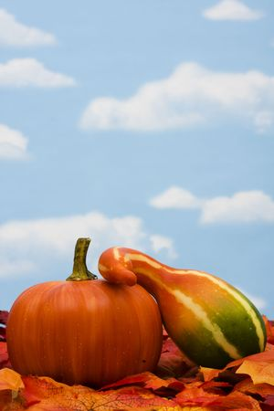 Fall harvest scene with gourds with copy space photo