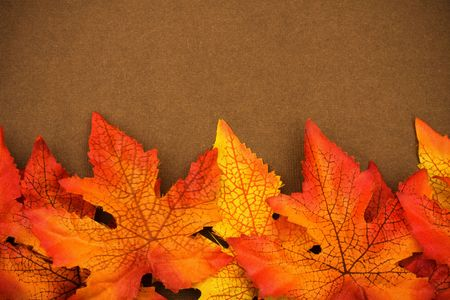 Fall leaves on brown background, fall border Banco de Imagens