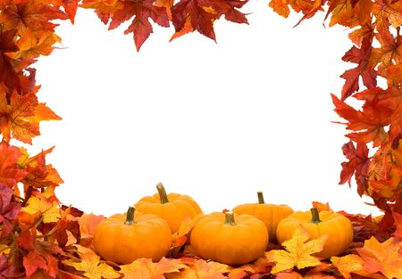 pumpkin leaves: Fall leaves making frame on white background with copy space, colourful fall background frame