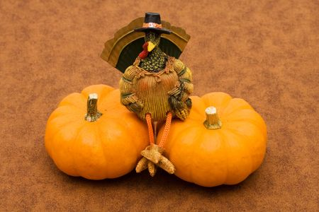 Two pumpkins sitting together with a turkey sitting on one, pumpkin