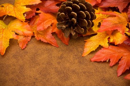 Fall leaves with a pinecone on brown background, fall border photo