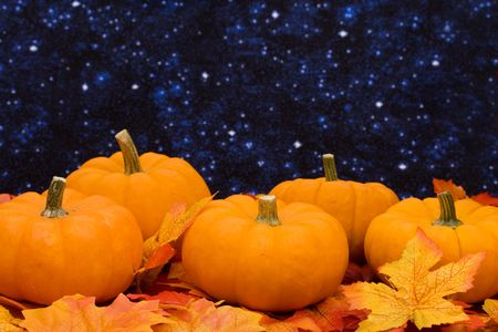 Fall leaves with pumpkin on night sky background, fall harvest  Stock Photo - 3623437