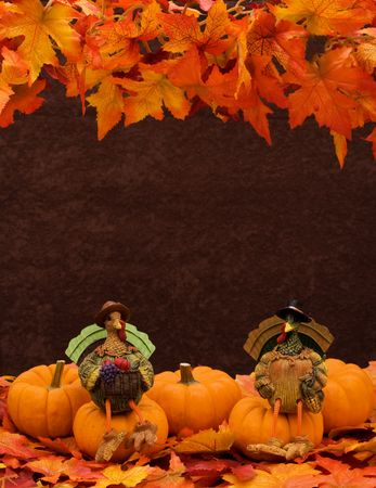 Pumpkins sitting together on leaves with a turkey sitting on one, pumpkin border photo