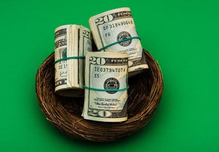 gniazdo jaj: Rolls dwudziestu Dolar rachunki posiedzenia w gniazdo na zielonym tle, gniazdo jaj