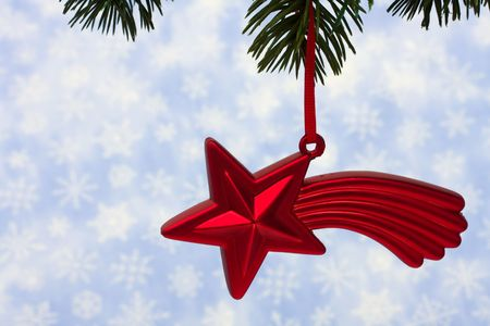 limb: Christmas tree limb with red star glass ornament on snowflake background, Christmas tree