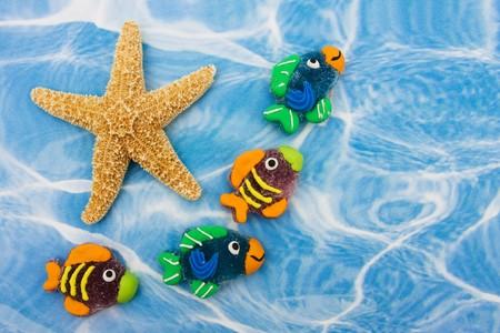 Un grupo grande de peces de colores con una estrella de la sesión en el agua azul de fondo, los peces de colores frontera Foto de archivo - 4050188